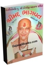 Bhagvat Katha - Dongre Maharaj